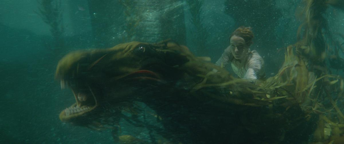NEWT RIDING CREATURE - fantastic beasts