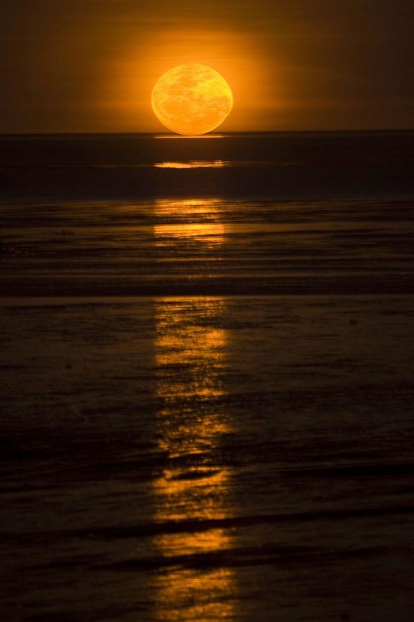 Staircase to the Moon_Roebuck Bay - Broome Australia Travel