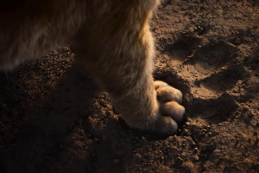'The Lion King' Trailer Just Dropped and We Have All the Goosebumps