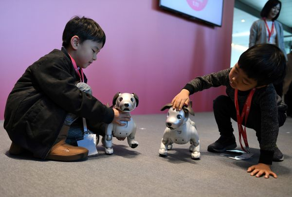 Sony's Robodog Aibo Can Keep Tabs On Your Family Members