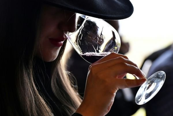 Red Wine Could be Good For Your Digestive System