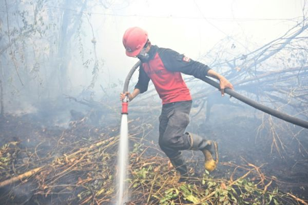 Indonesia's Battle Against Forest Fires Rages On