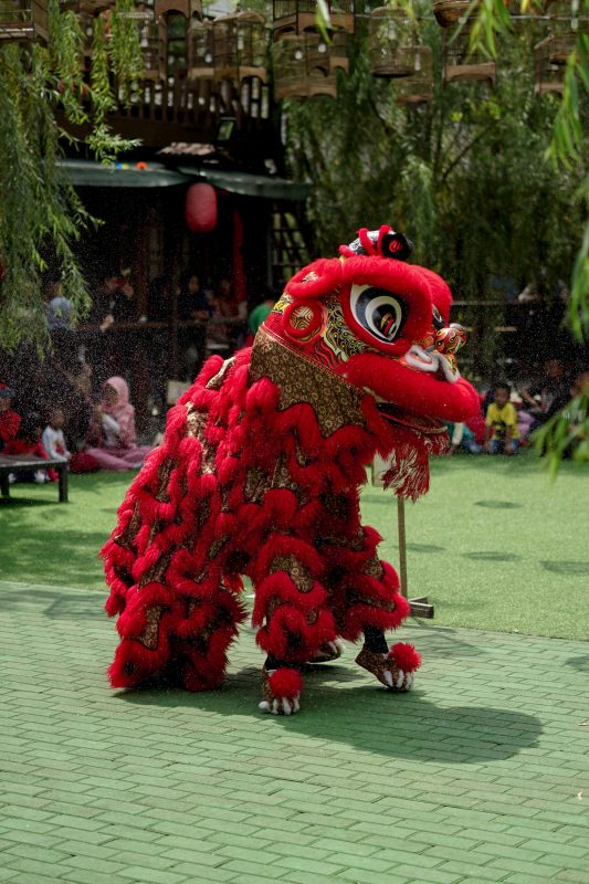 The lion dance performance that is expected to bring luck and joy during Chinest New Year celebration.